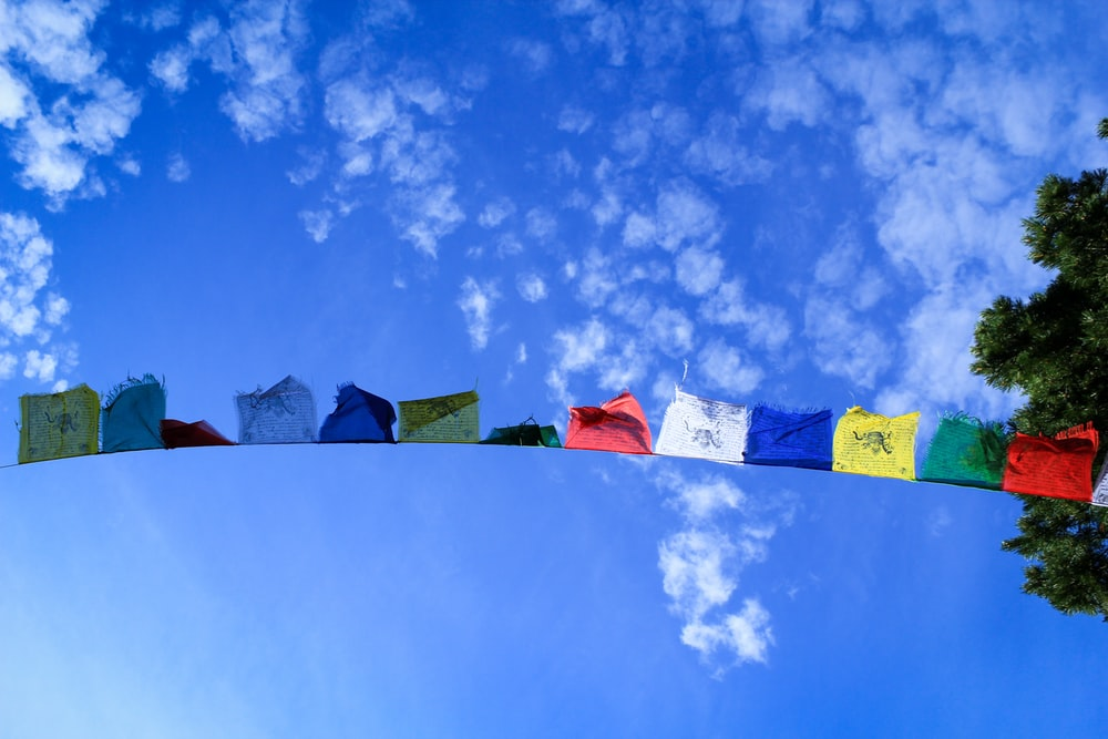 assorted-color textiles hanging on string during daytime
