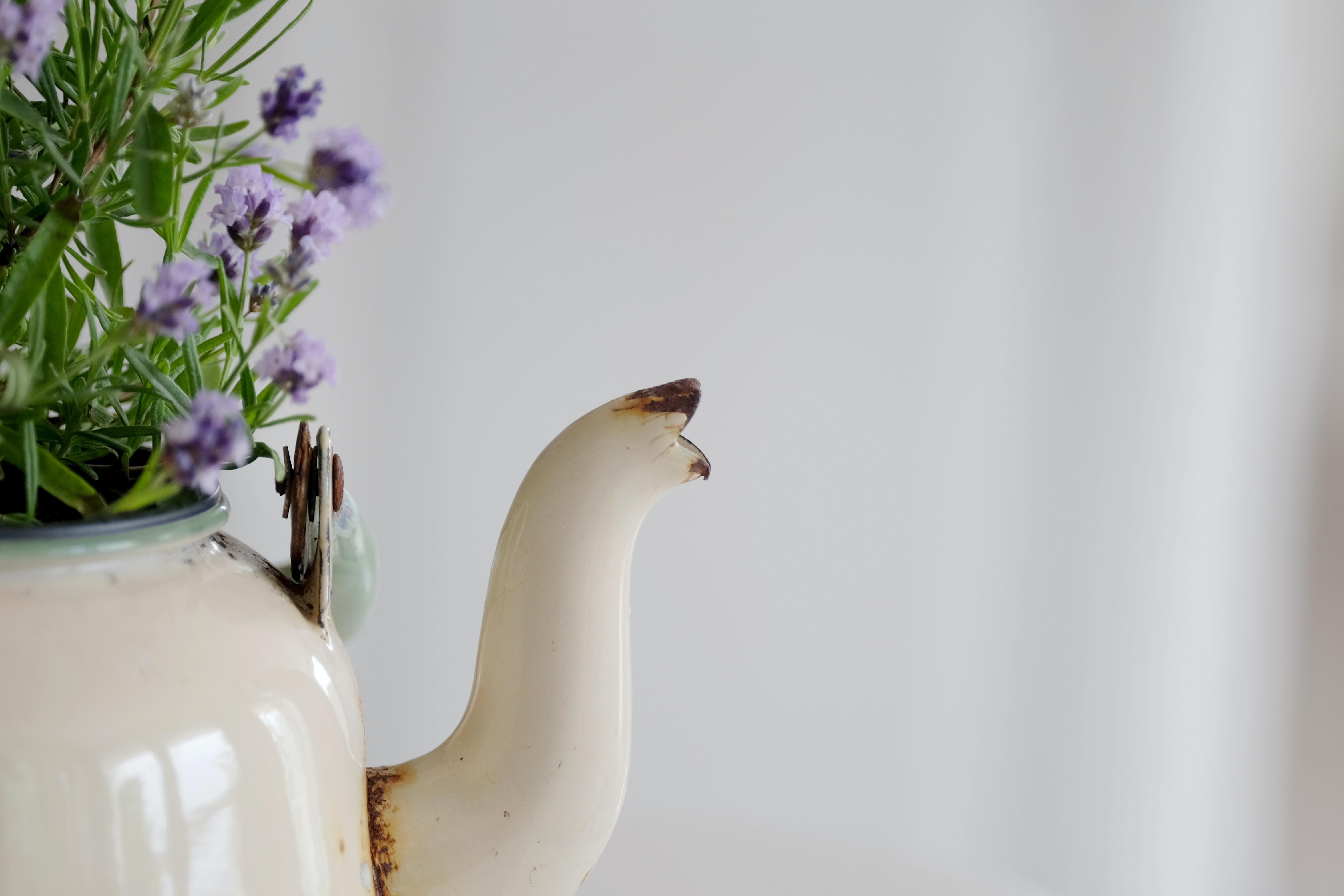 white enamel kettle