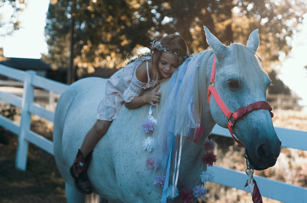 girl riding white horse during daytime