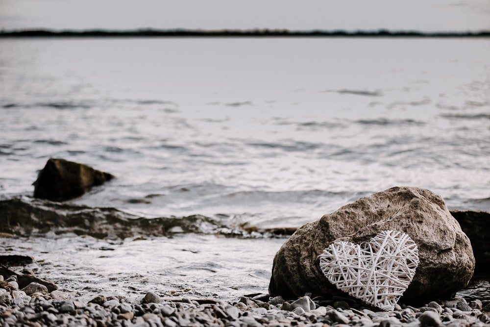 heart-shaped string artwork leaning on brown rock near shoreline at daytime