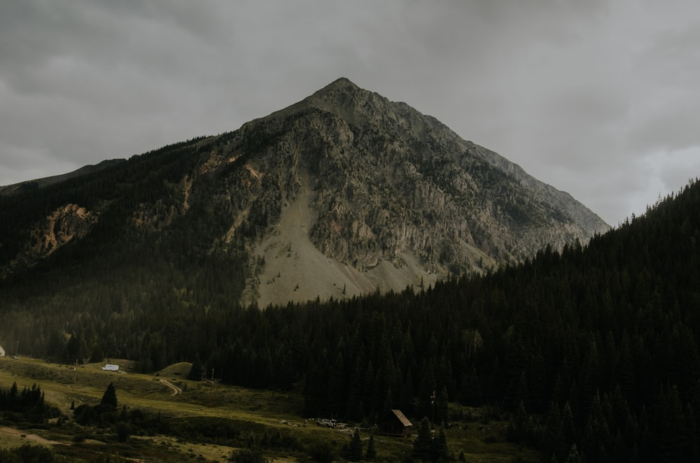 green mountain and forest during daytime