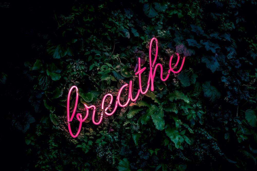 pink breathe neon sign