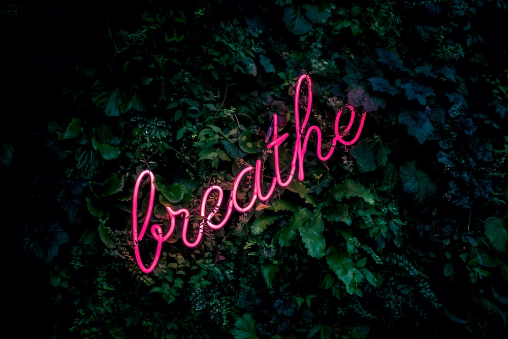 pink breathe neon sign