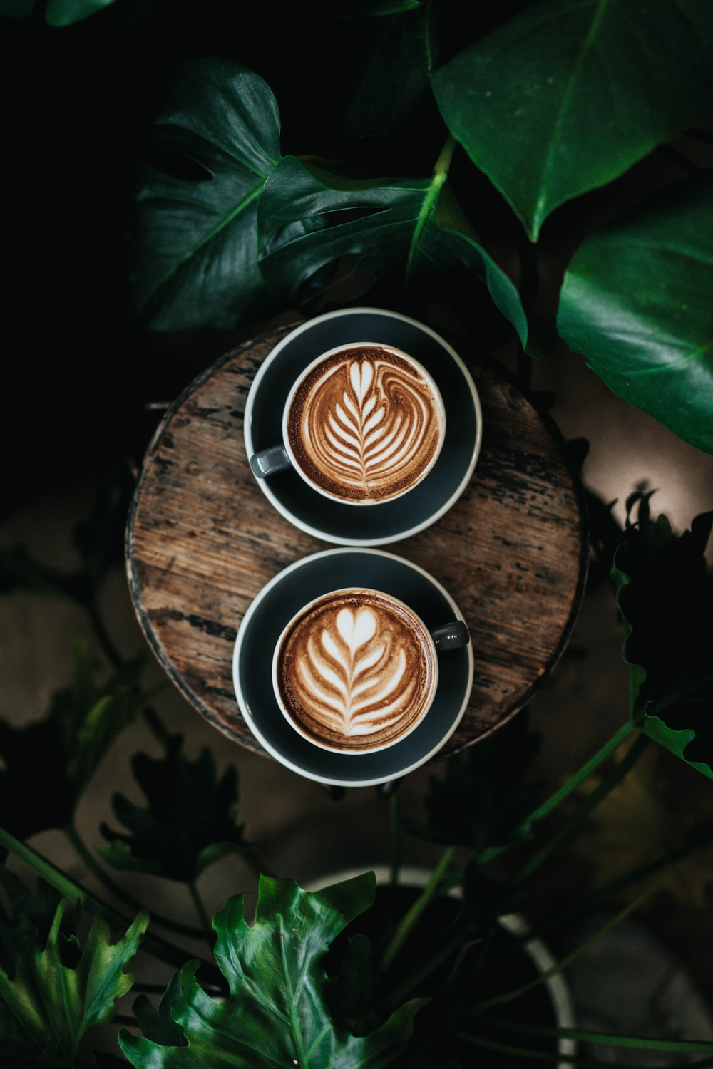 100 Coffee Pictures Download Free Images On Unsplash