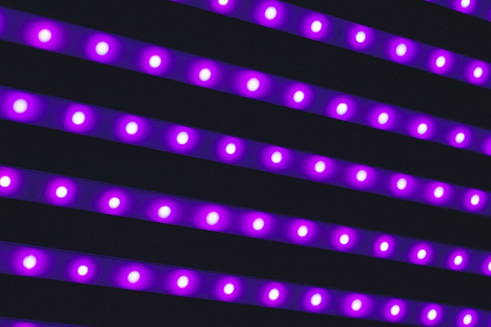 photo of purple LED light
