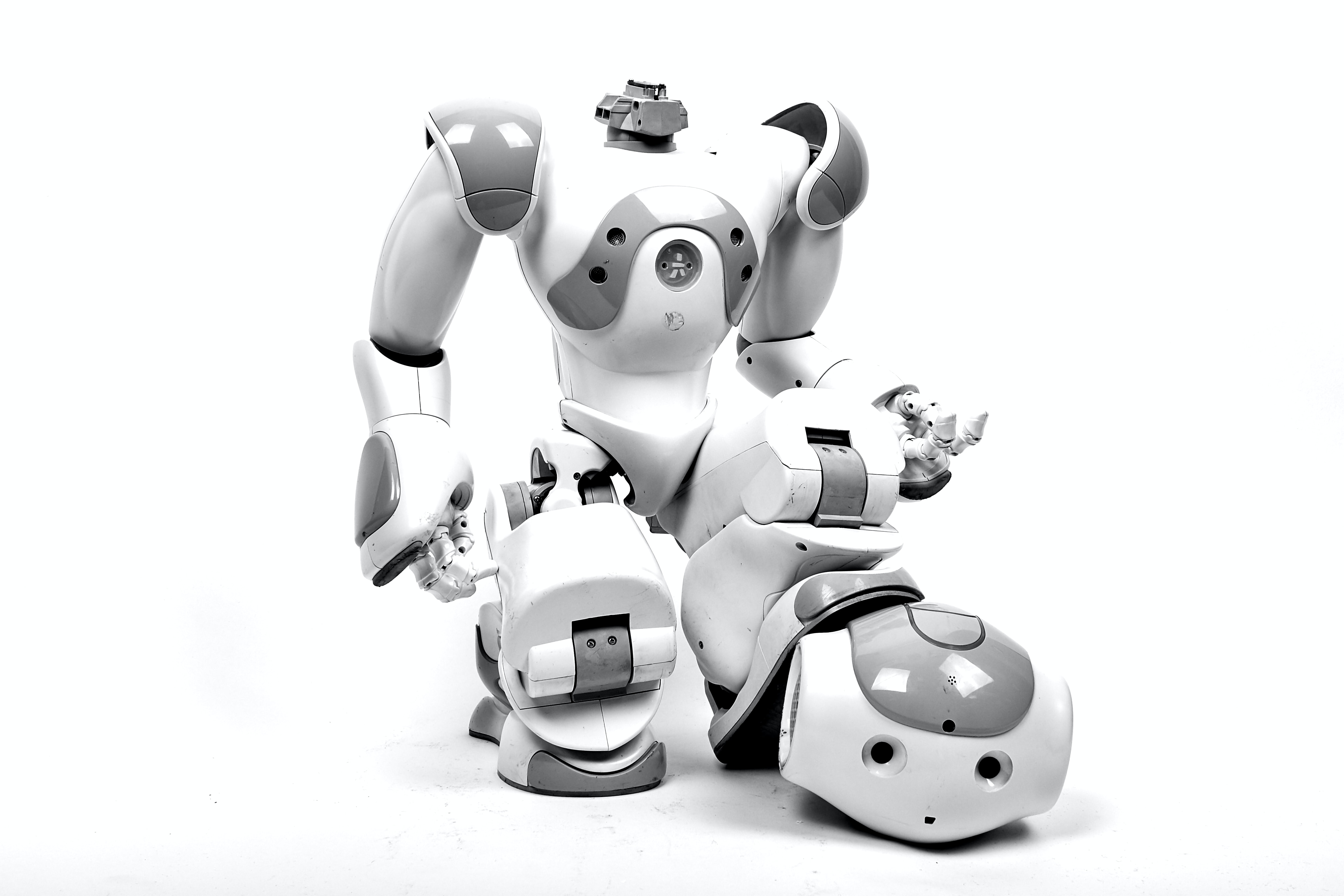 white and gray RoboSapien in white background