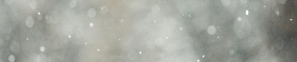 REN header image