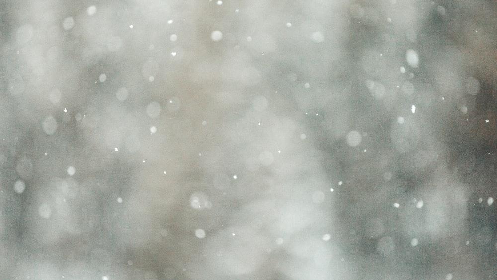 bokeh photography of gray lights