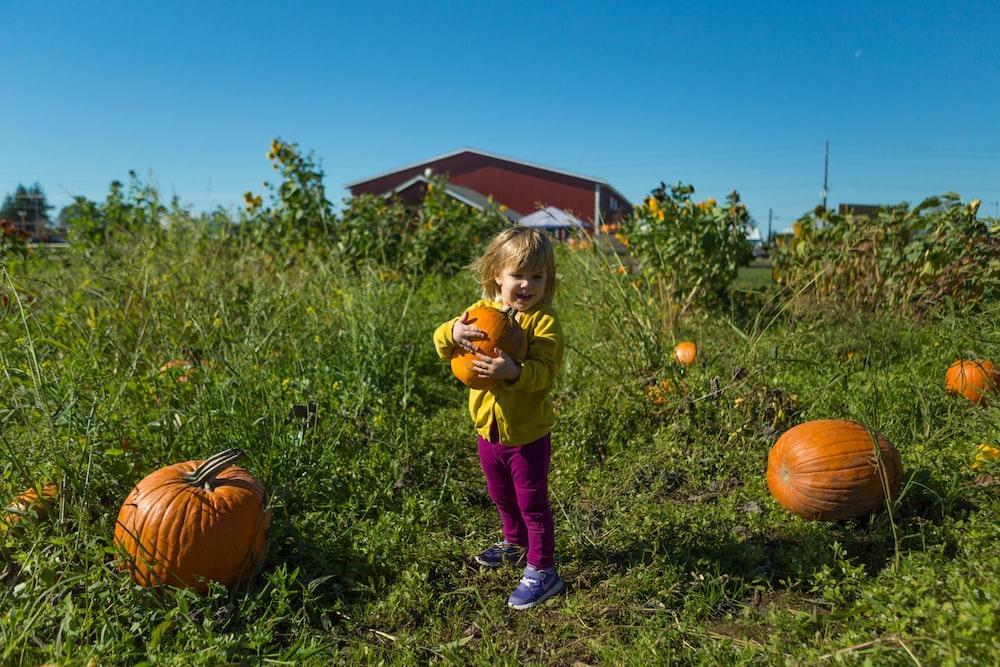girl hugging pumpkin while standing on grassland under blue sky at daytime
