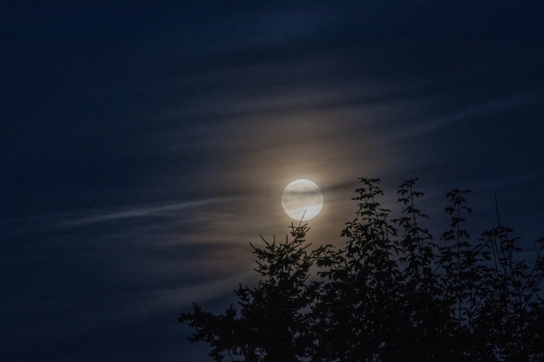 moon on sky photography