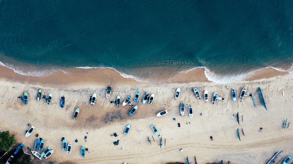 aerial view of people on shoreline