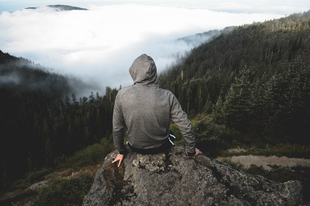 man sitting on hill in forest
