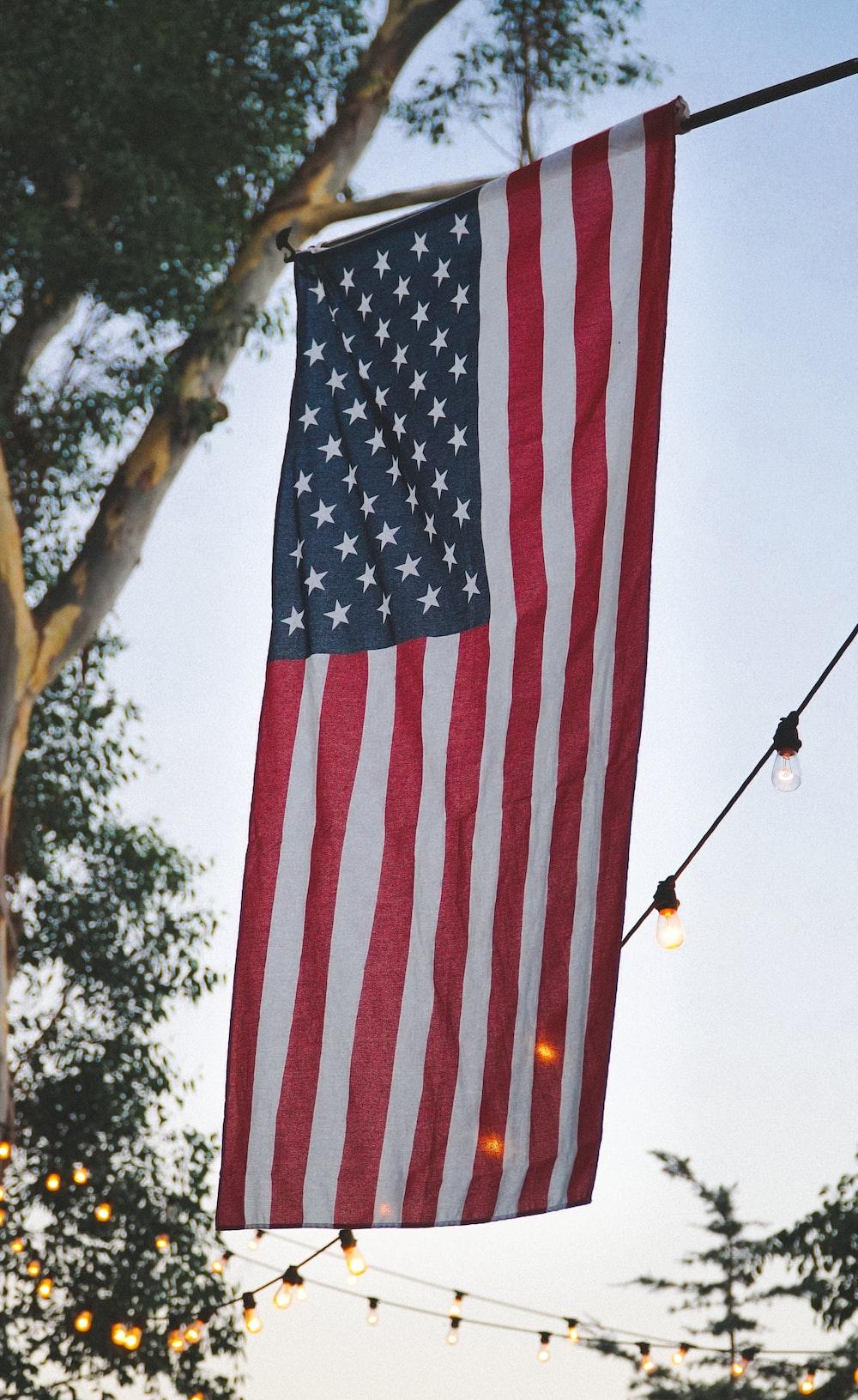 USA flag on black rod