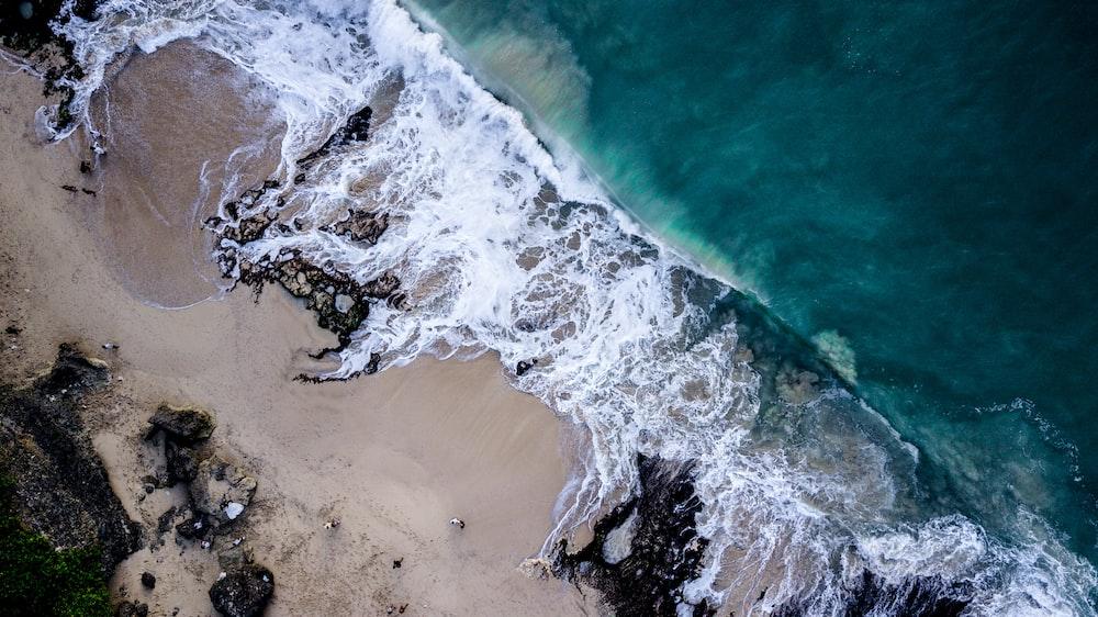 bird's eye view photo of seashore