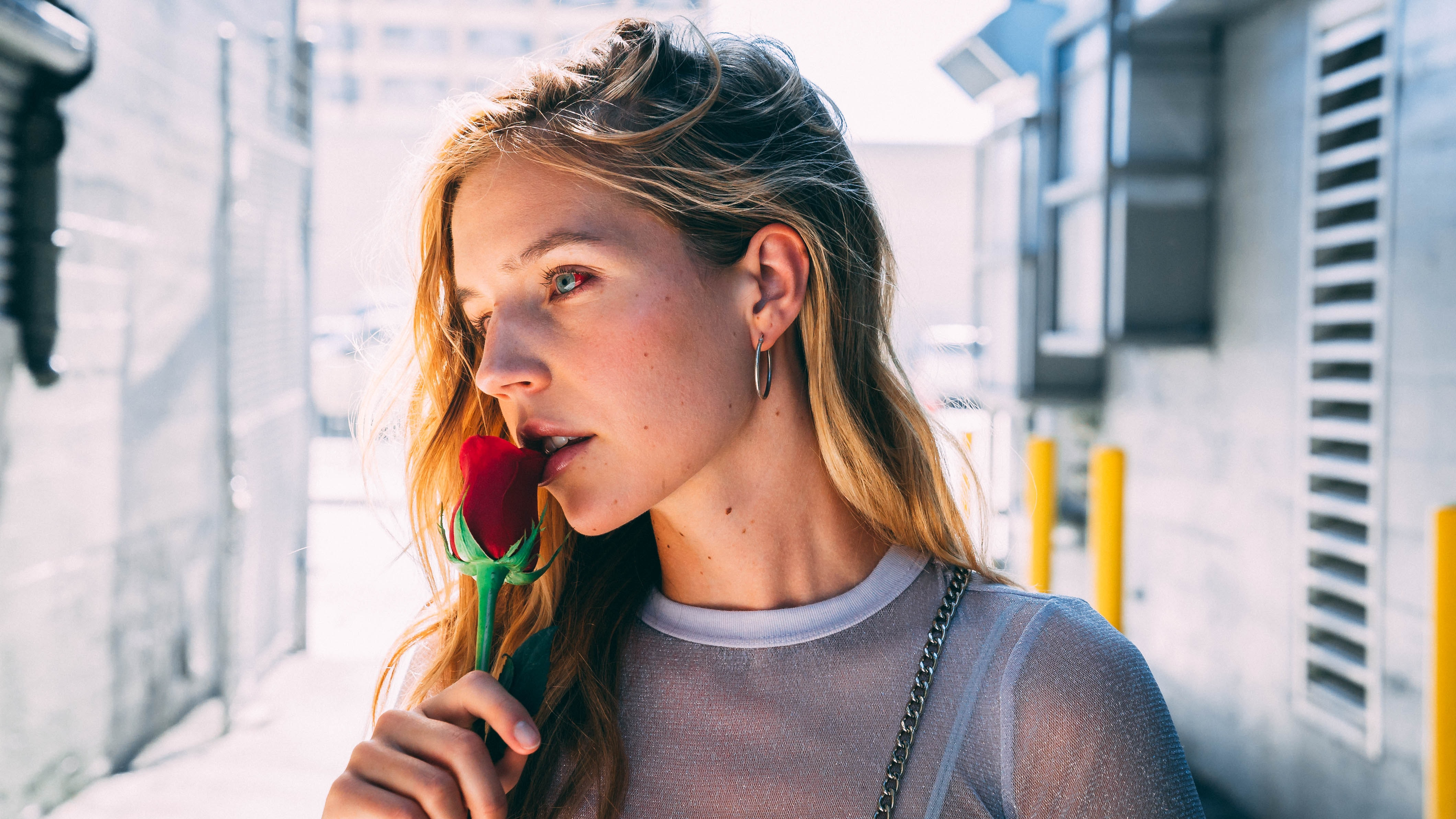 woman holding red rose flower