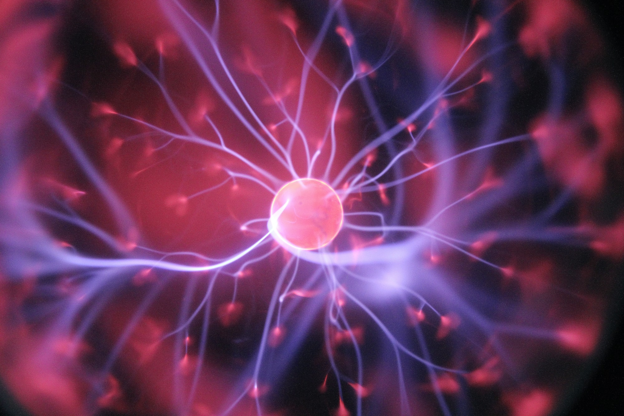 Living Guide: Pandemic vs. Human Brain