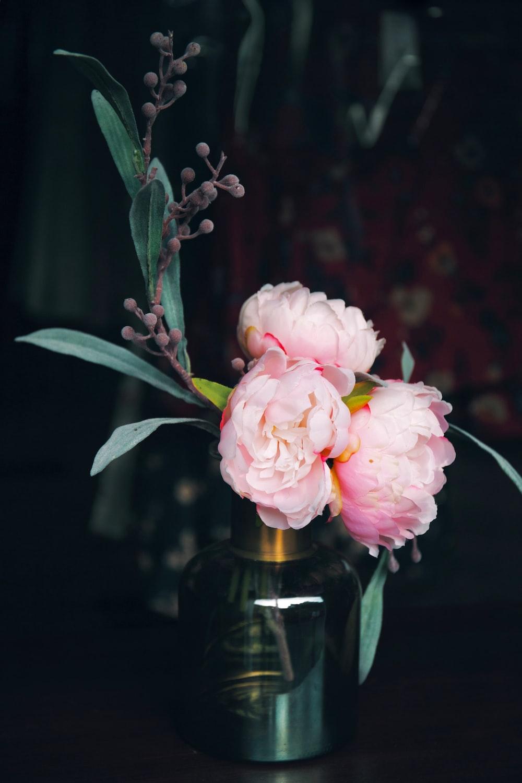 pink petaled flower in the vase