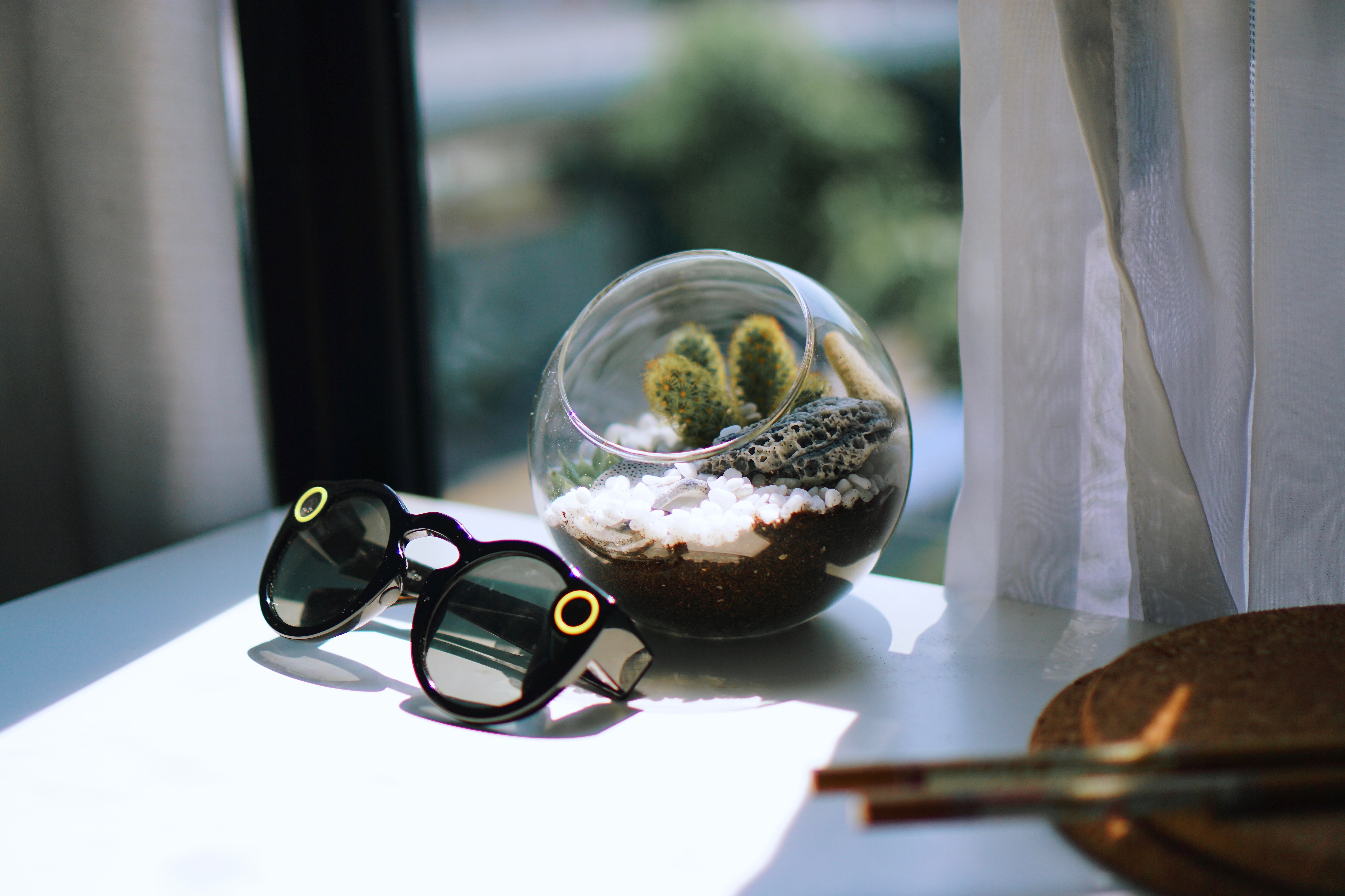 black framed sunglasses near glass bowl with plant on table