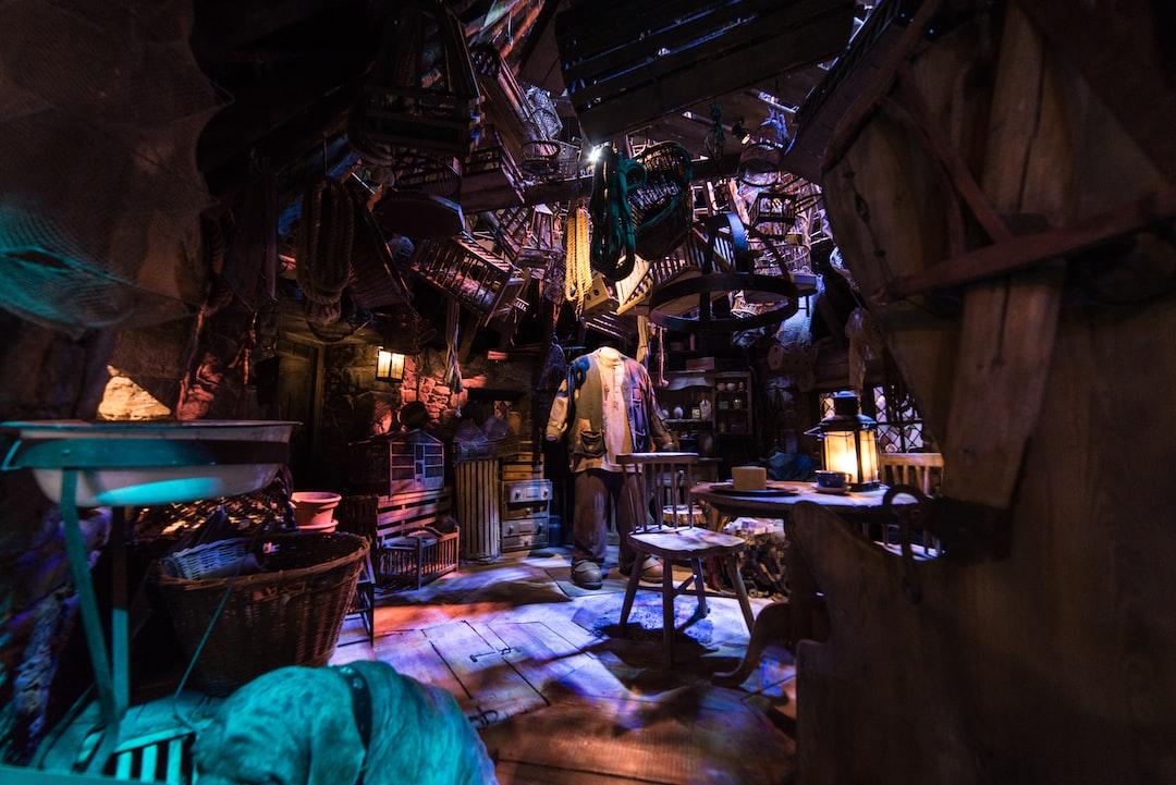 Captured Hagrid's Hut scene at Warner Brothers Studio. Love the details.