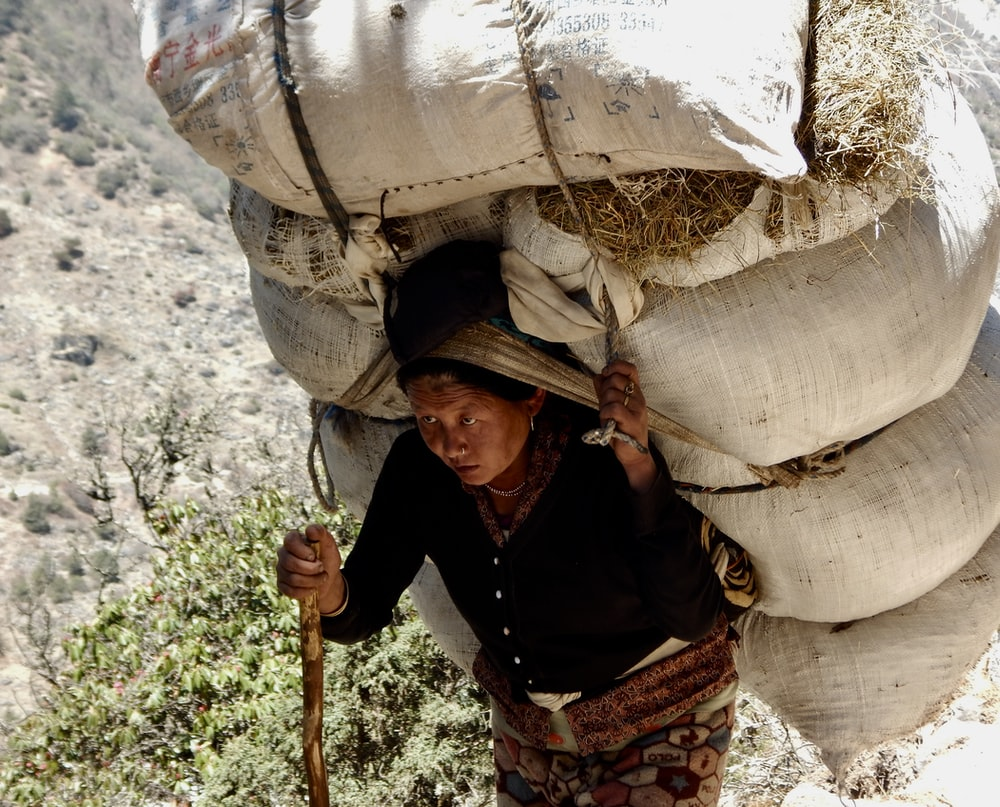 woman carrying sack of hay on back while holding stick