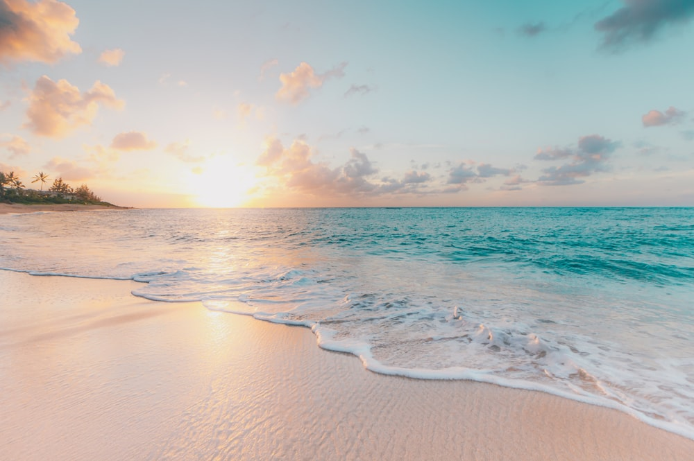 seashore during golden hour