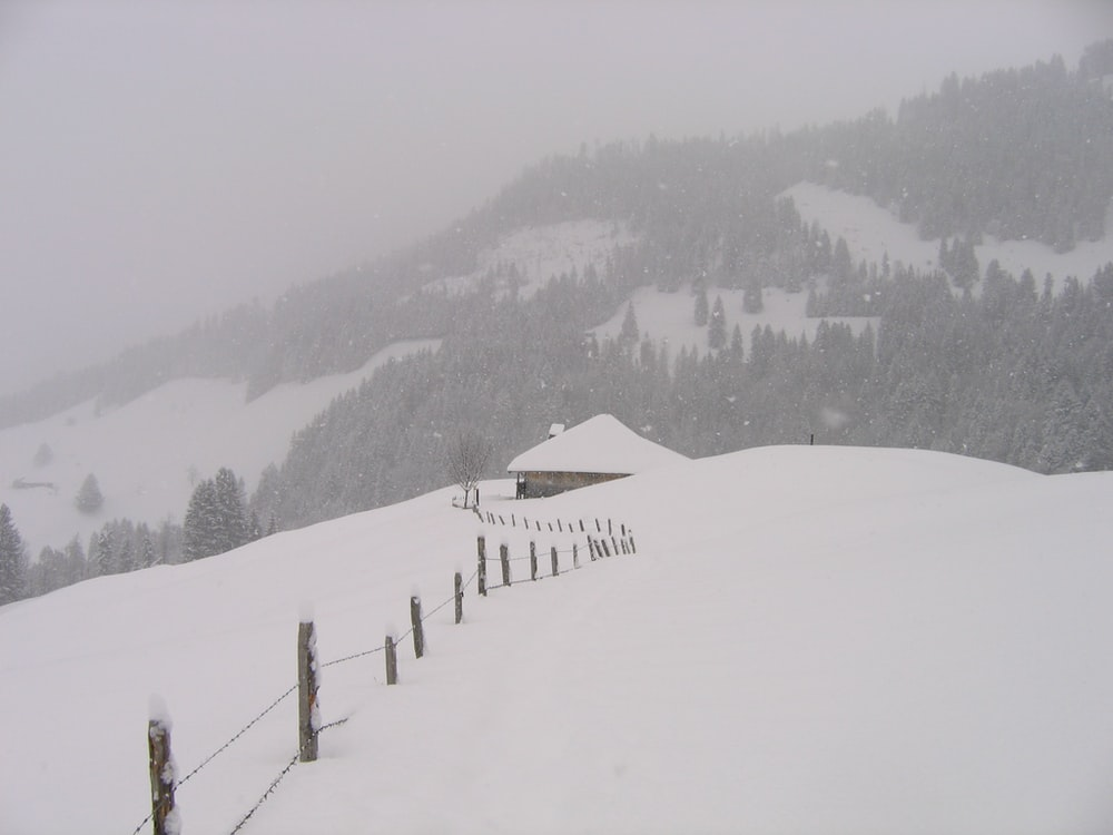 snow covered mountain while snow fall