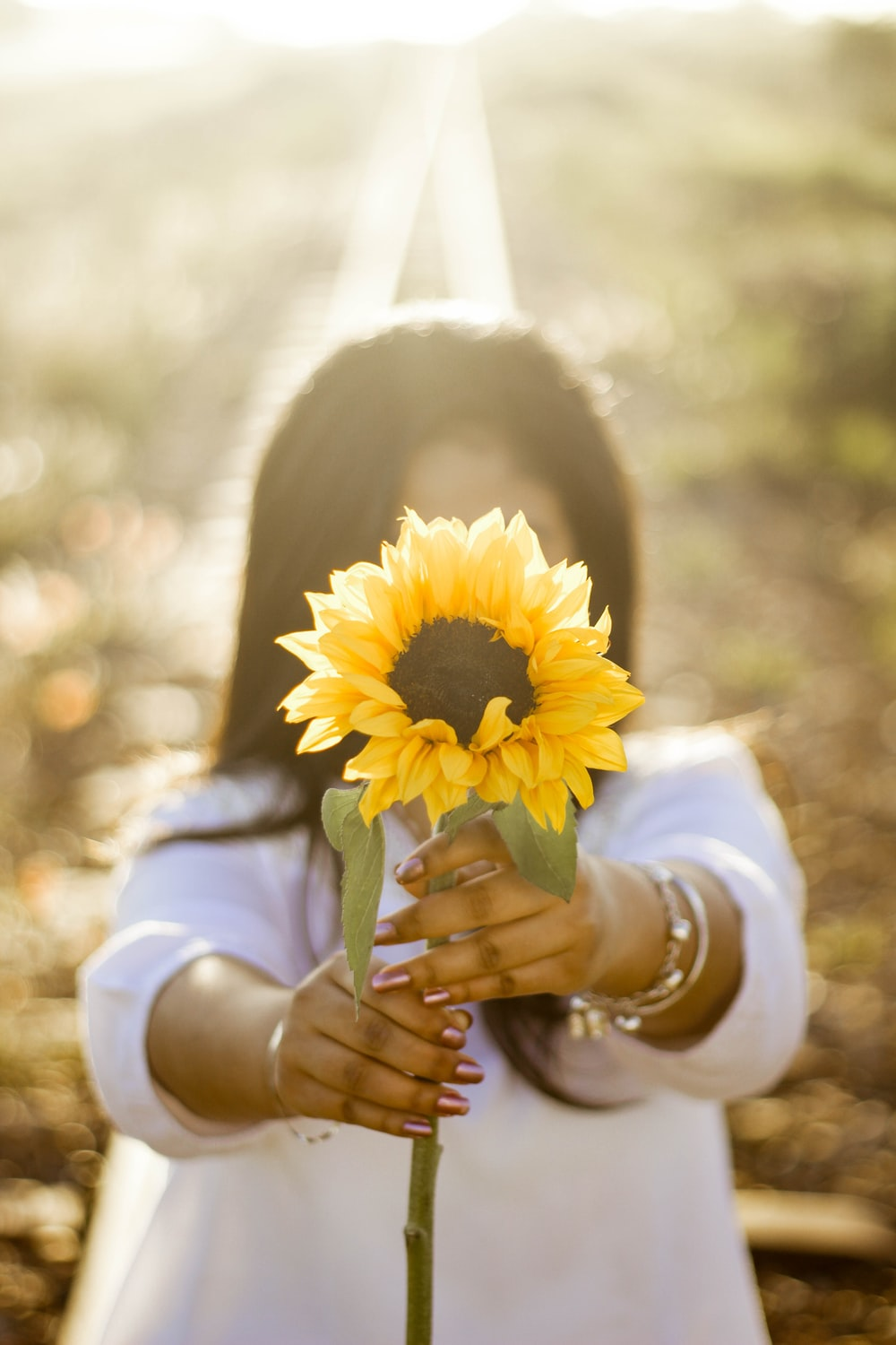 woman holding up sunflower outdoor during daytime