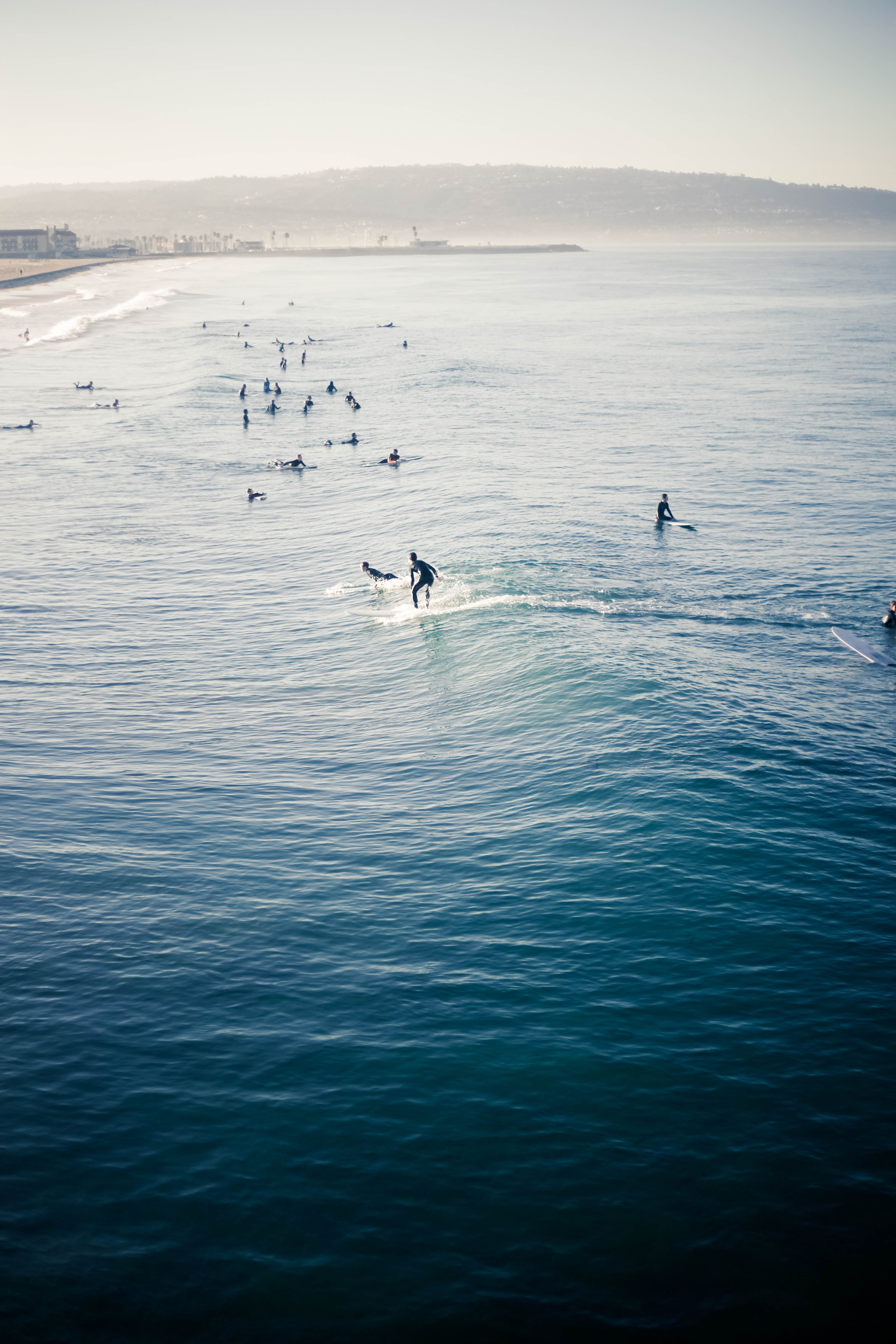 group of people swimming on beach during day time