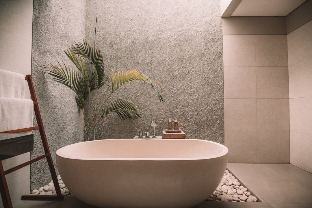 A simple but stylish bathroom with a plant