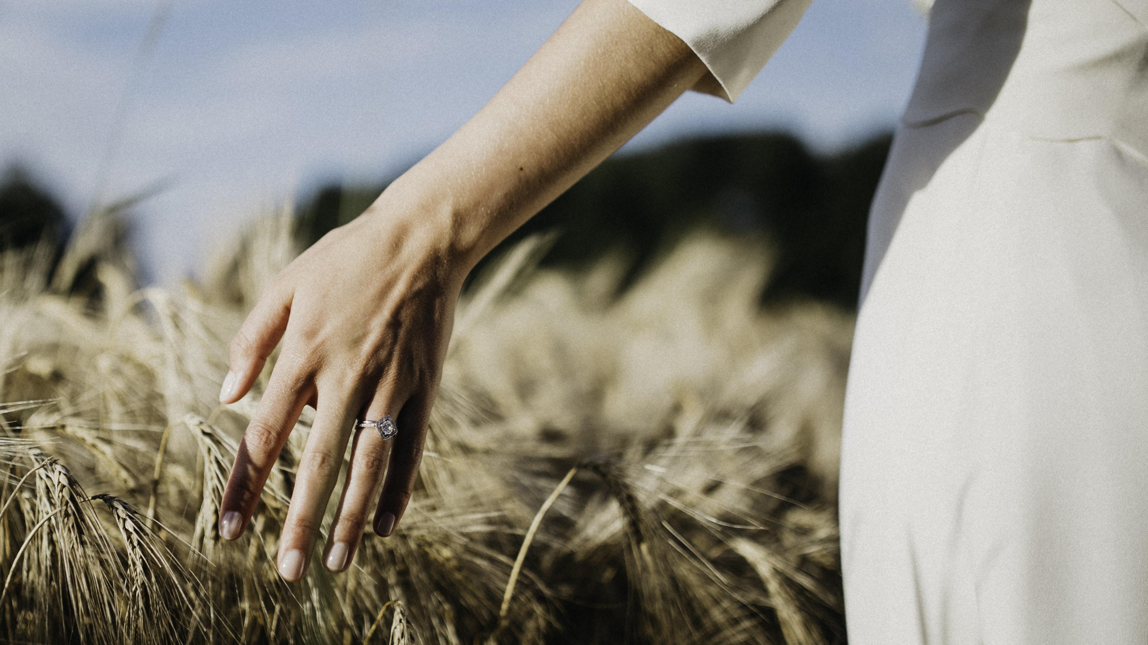 person touching wheat plants