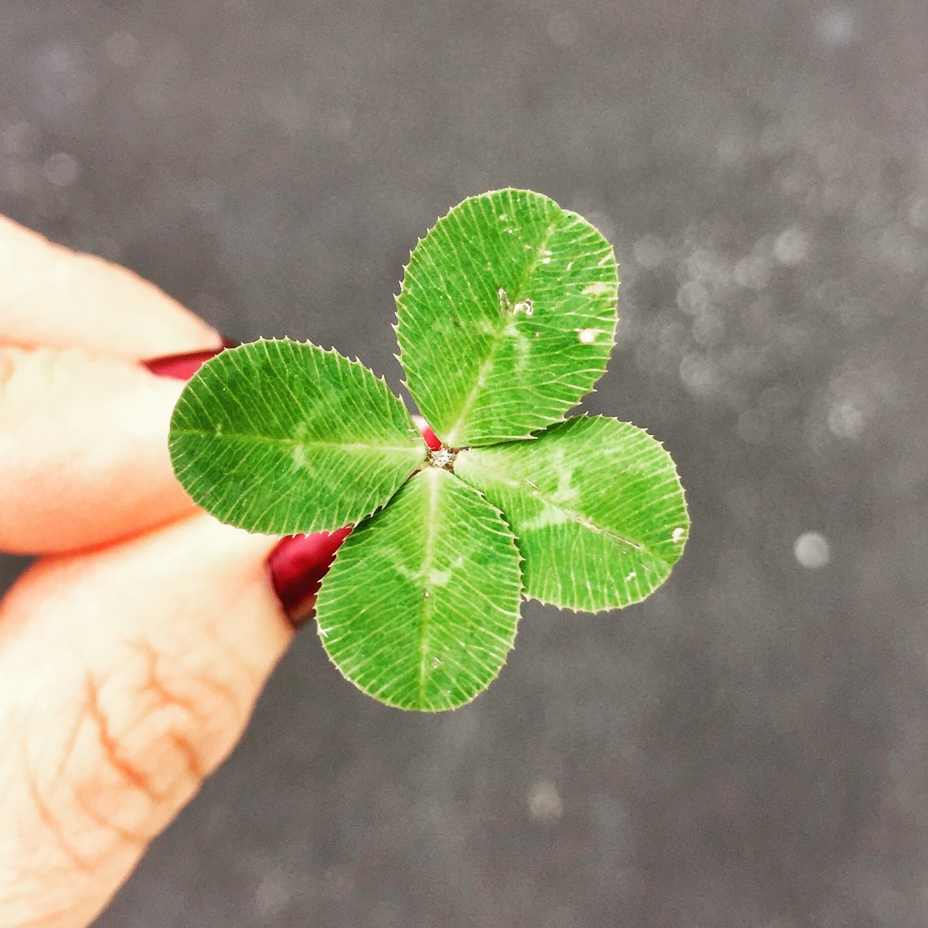 Lucky you #challenged stories