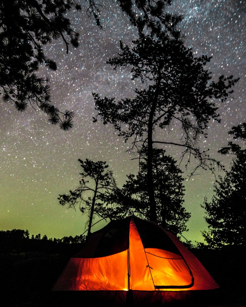 silhouette photo of tree beside orange and black tent during starry night