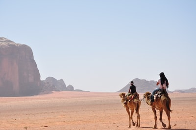 man and woman riding on horse during daytime jordan zoom background
