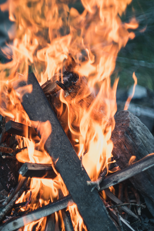 bonfire close up photo