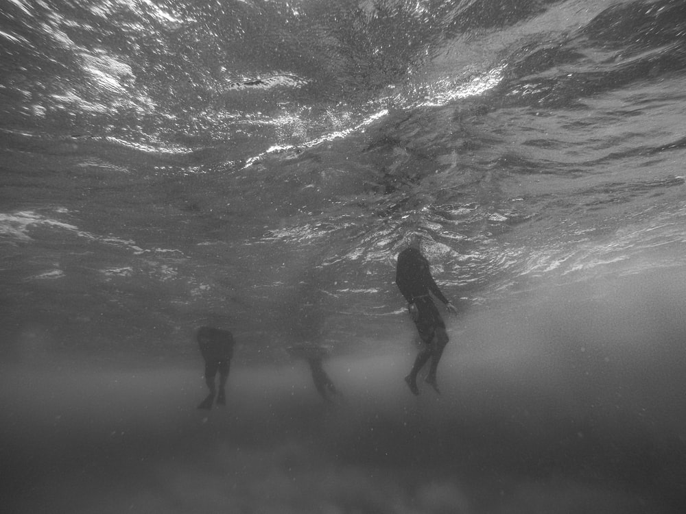 grayscale photo taken underwater of people swimming