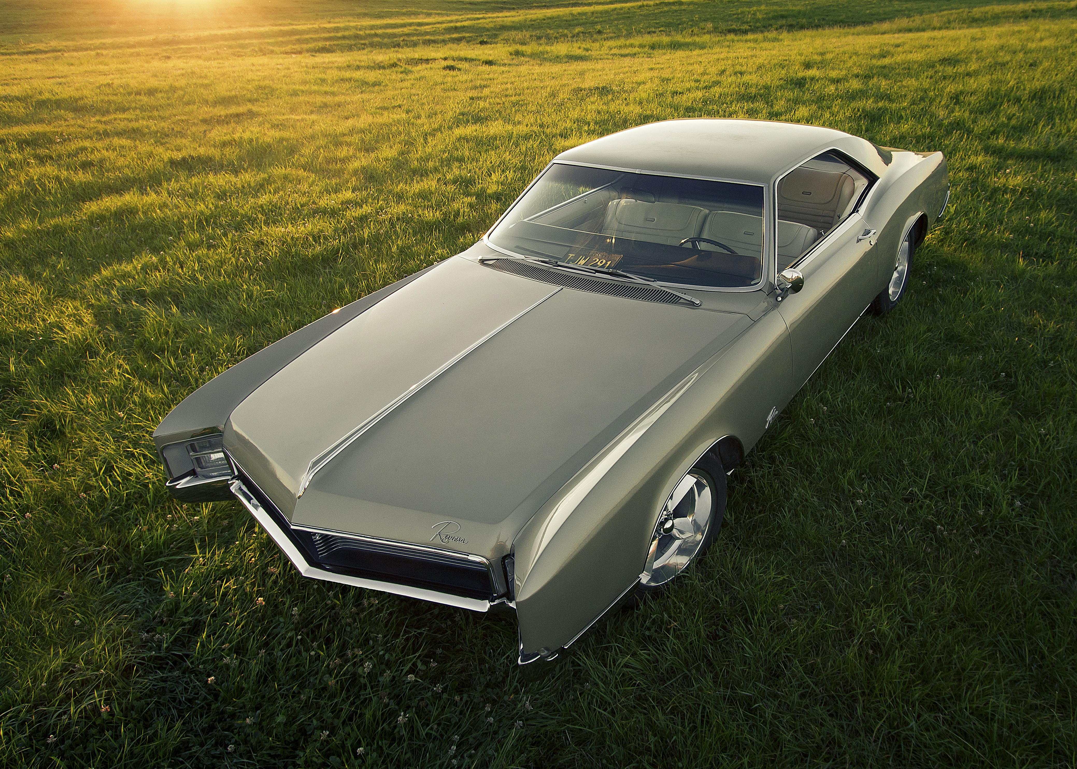 gray coupe on grass field