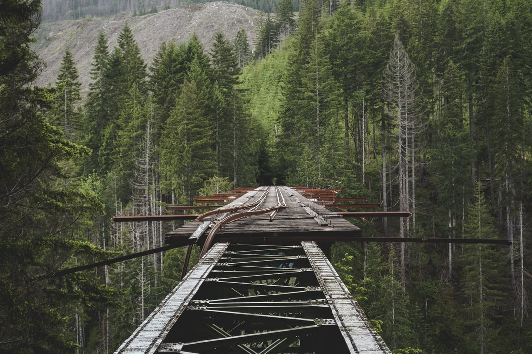 Vance creek bridge photo by Ruben Mishchuk (@ruben244) on ...