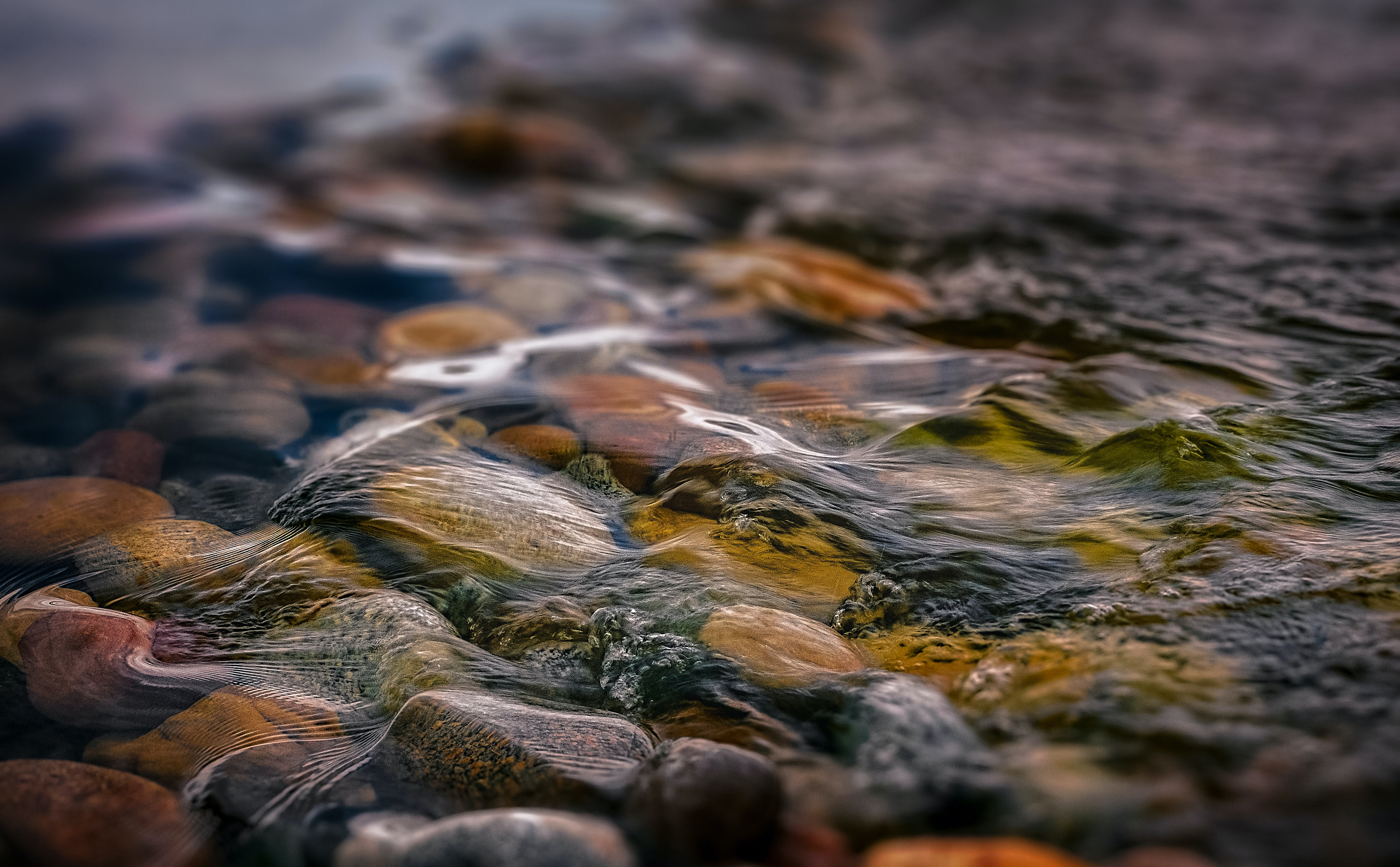 macro photography of water and stones