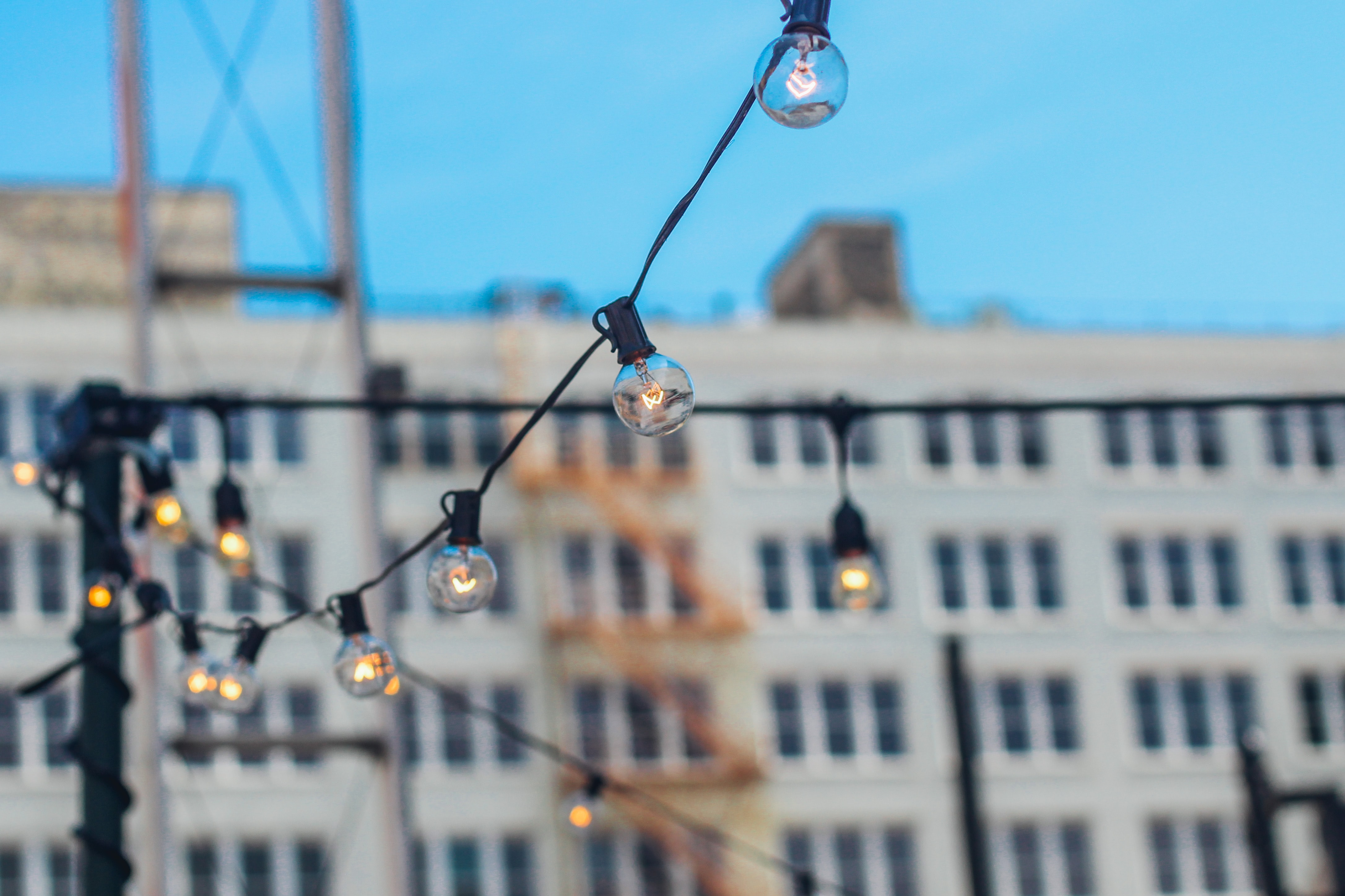 selective focus photography of bulb string lights