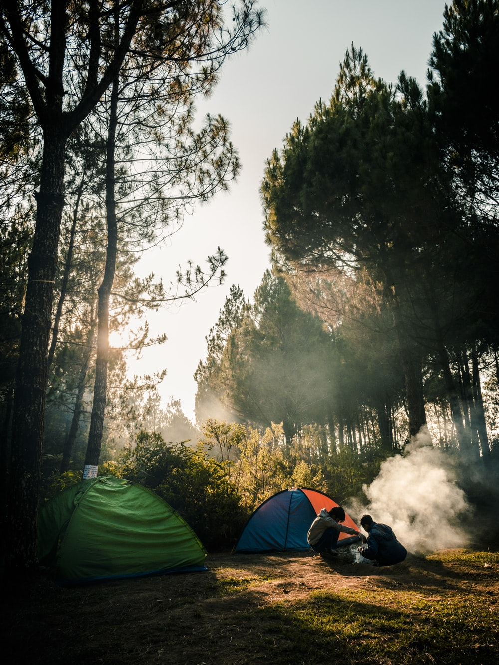 two persons sitting near two camping tents in the woods