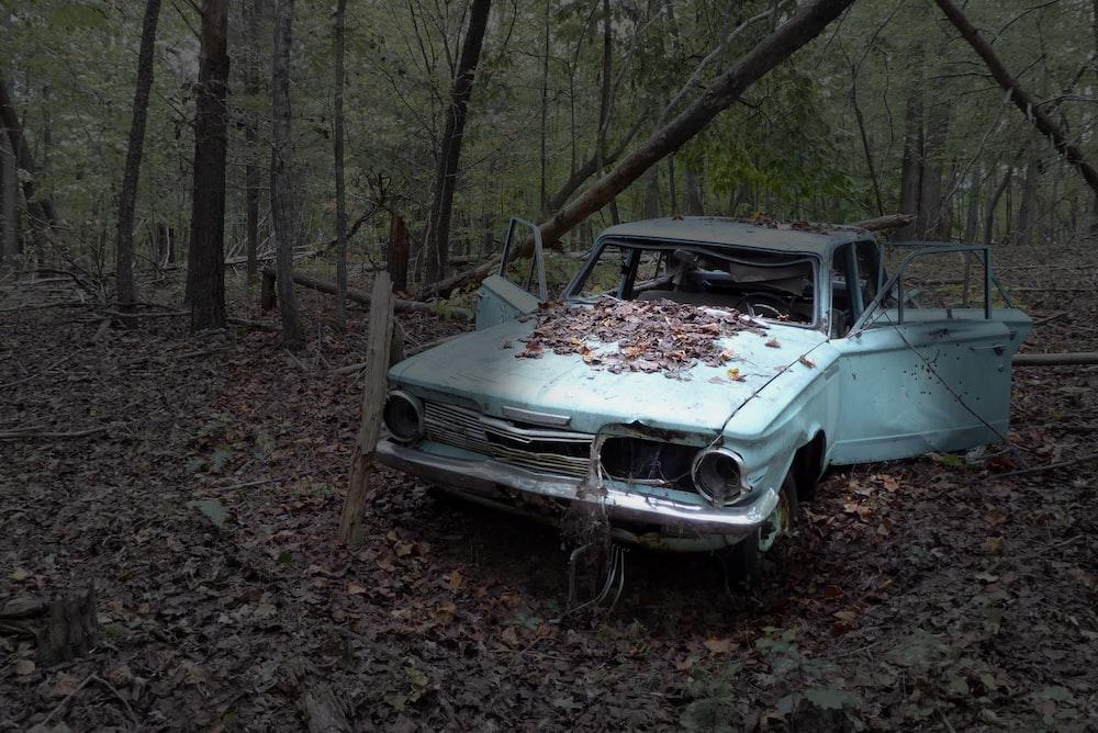 blue sedan in forest