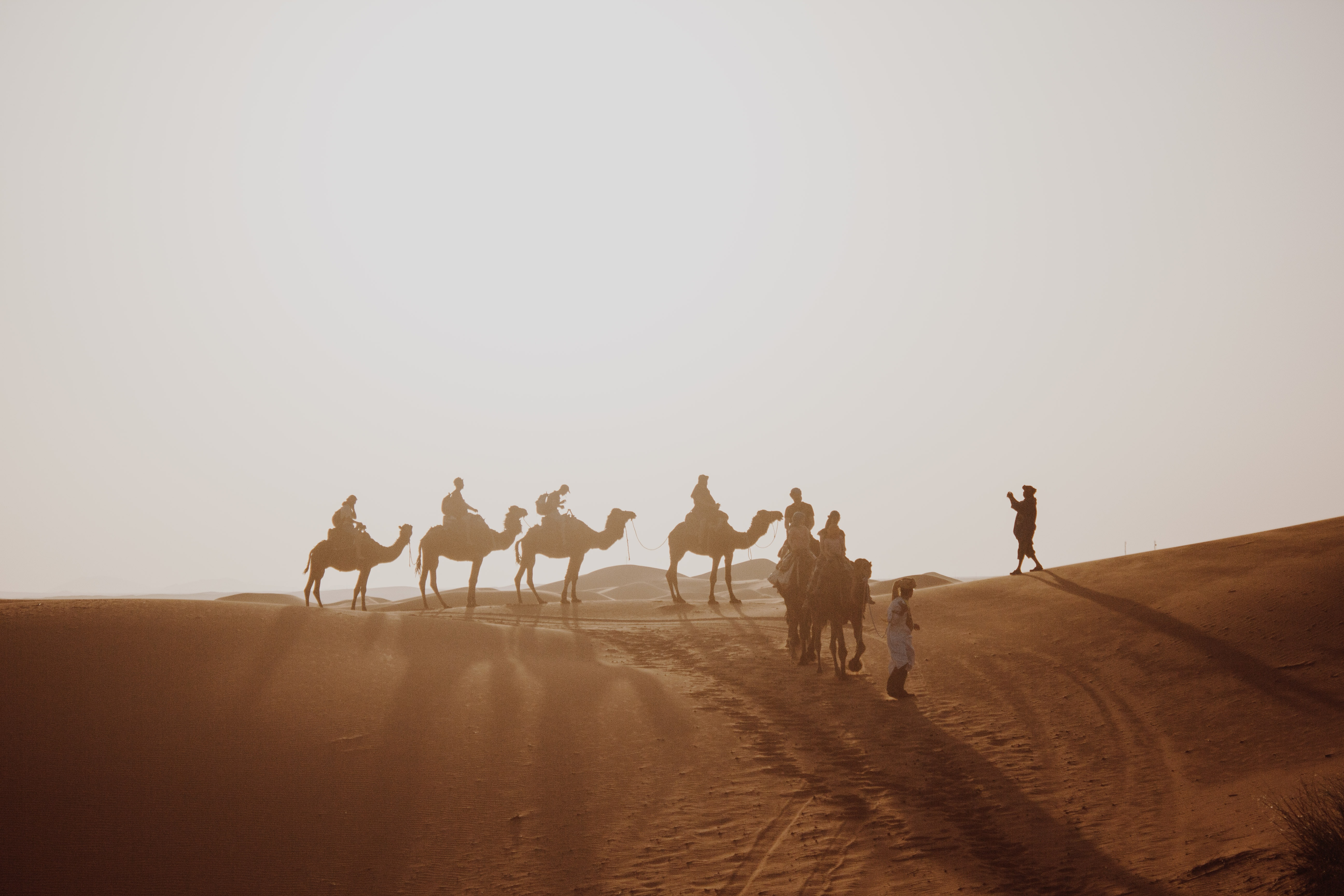 many people riding on camel through the desert field during daytime