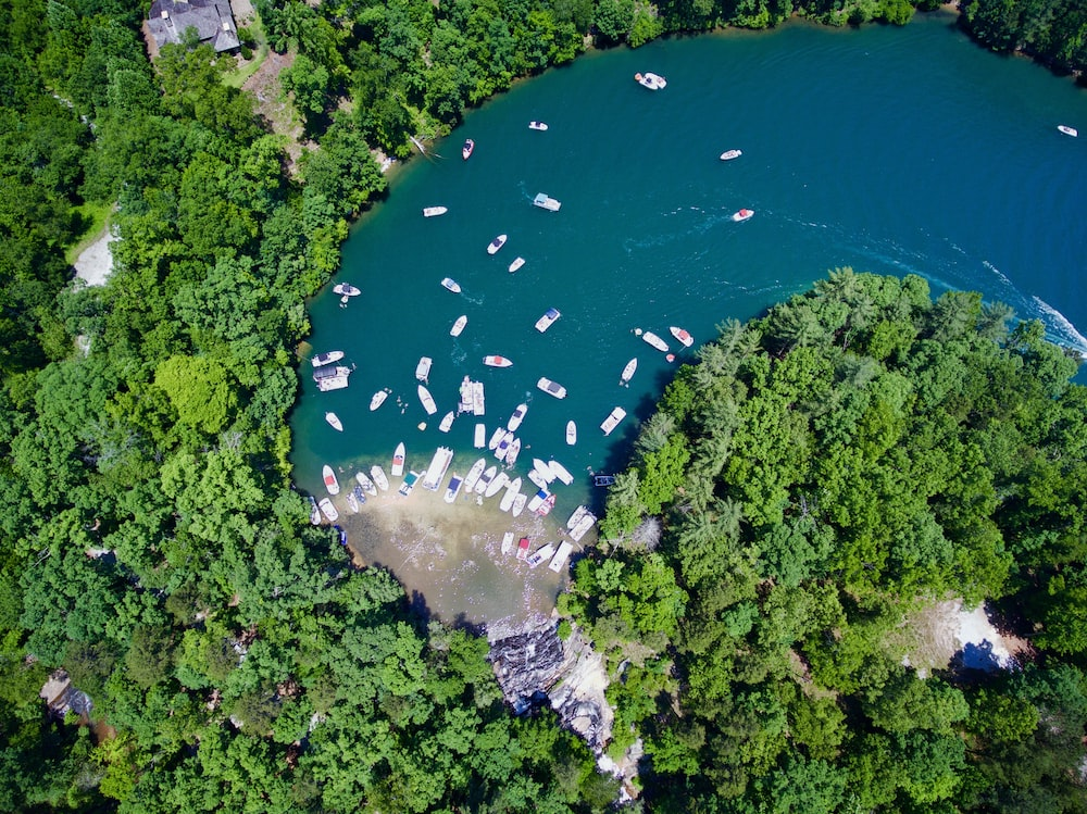 aerial photography of boats at river with trees