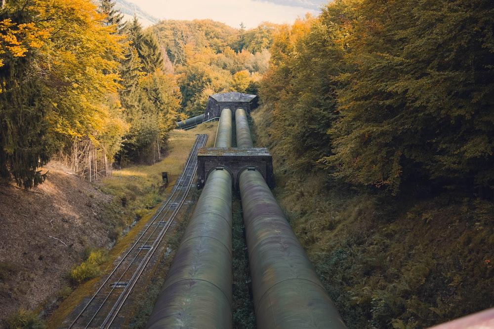 metal pipe between trees at daytime