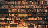 Bookworm reading stories