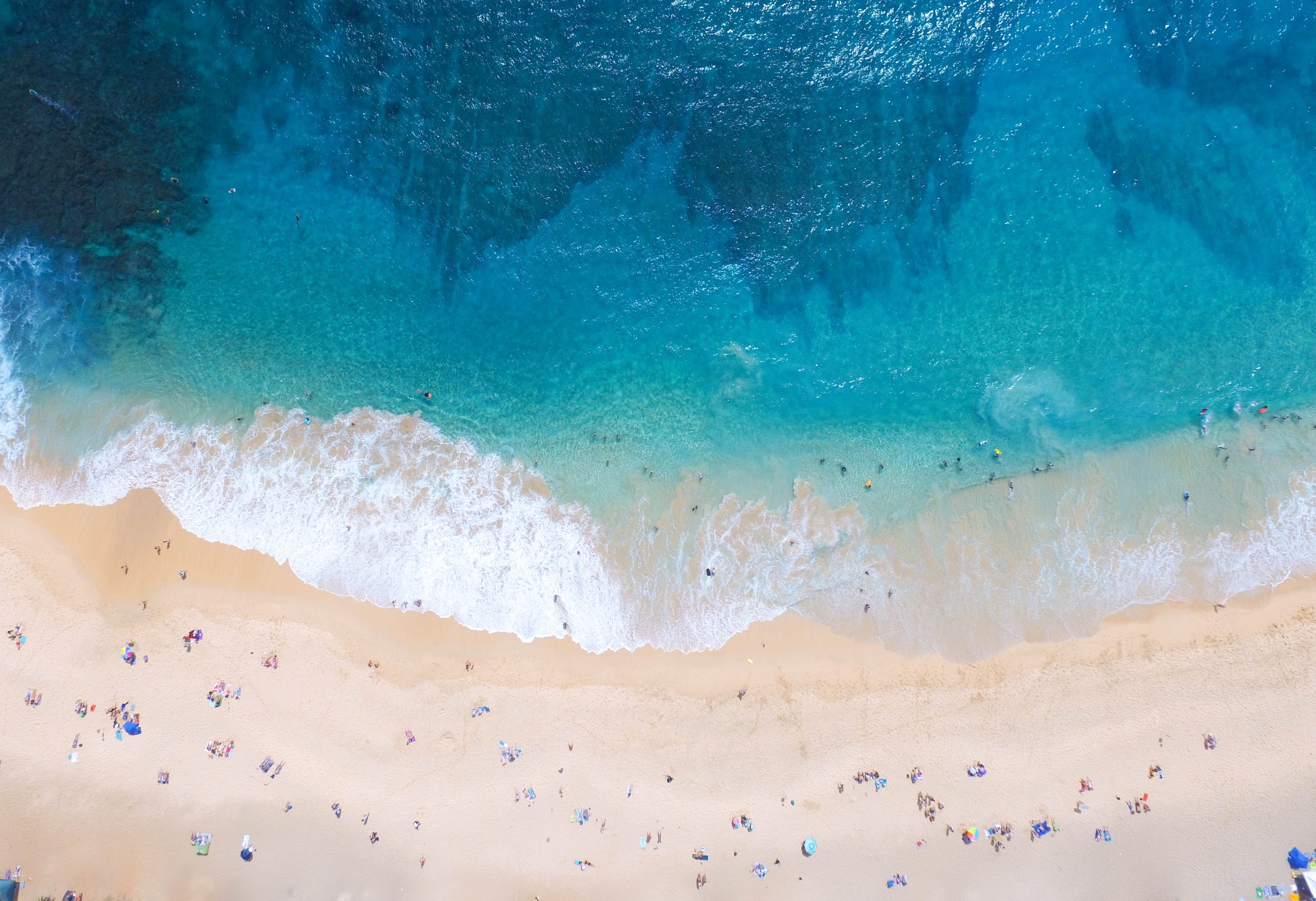 aerial photography of people swimming and sitting in beach during daytime