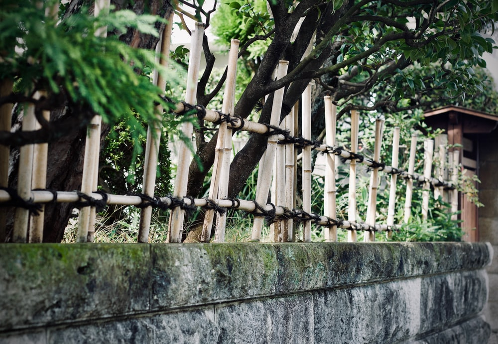 concrete wall with wooden spikes during day