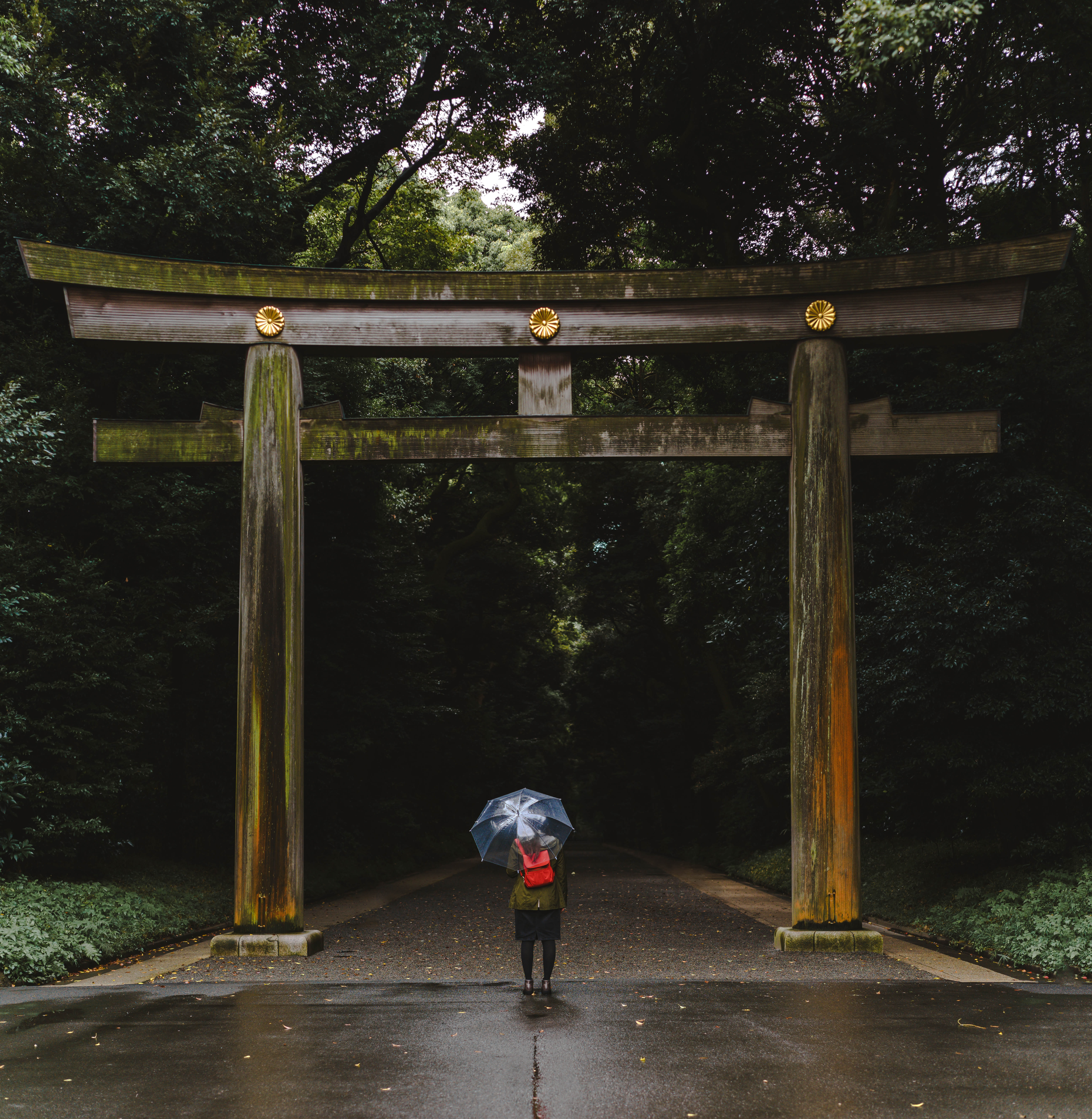 person standing in front of torii during daytime