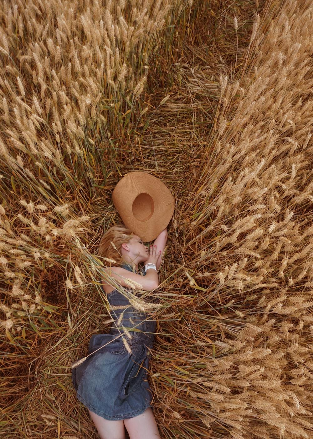 woman lying on wheat field