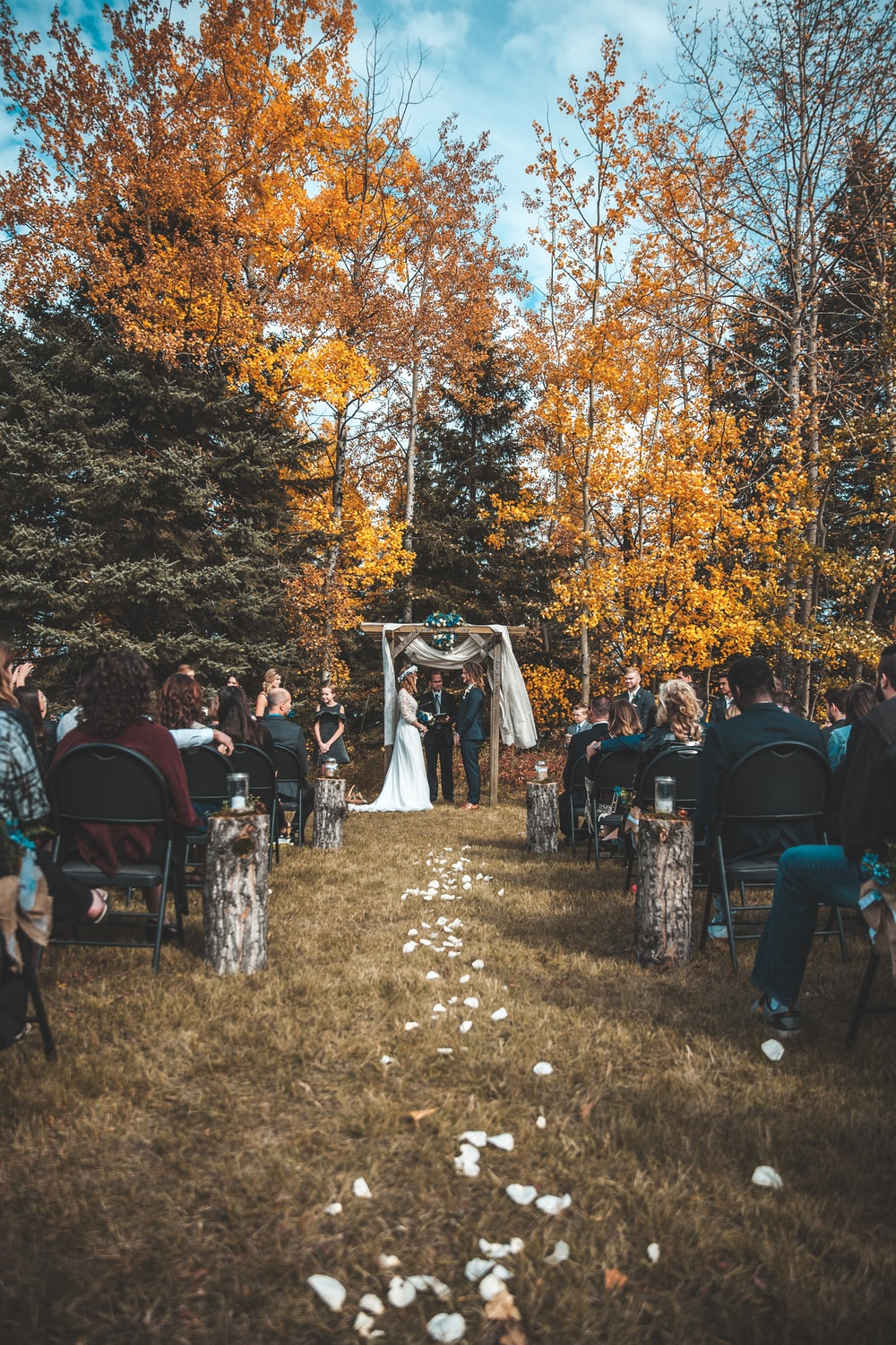 wedding ceremony beside fall trees during daytime